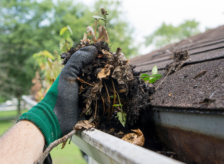 The Benefits of Having Your Gutters Cleaned