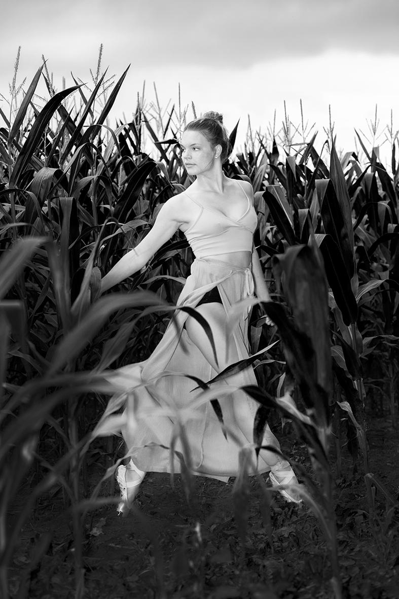 Tess in cornfield