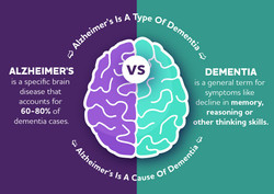 Alz vs Dementia