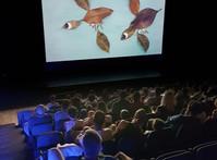 I cartoni della scuola dell'infanzia di Botticino Sera al teatro Lucia