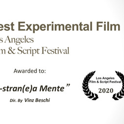 "Best Experimental Film assegnato al video ""E-stran(e)a-mente"" al Los Angeles Film & Script festival"