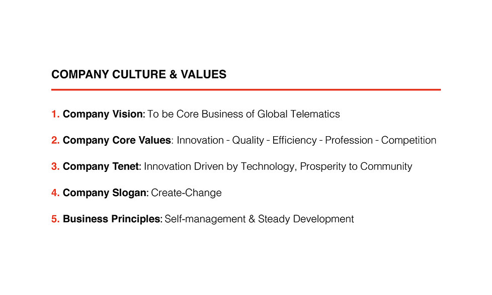 Company Culture and Values Website Page.