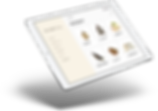 portfolio living floating ipad mockup.pn