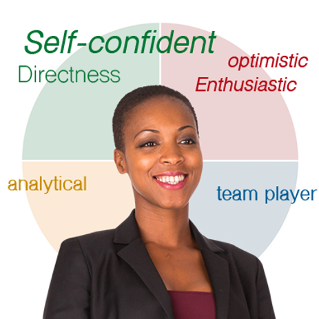Personal DISC Assessment