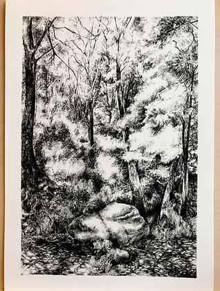 Bramley Fall (Print)