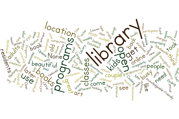 Word cloud - adult non-library user comments