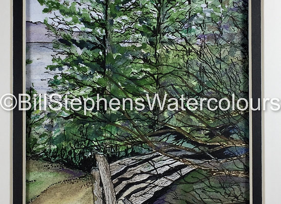 Original Watercolour Painting - Park in British Columbia