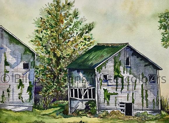 Original Watercolour Painting - Tobacco Kiln