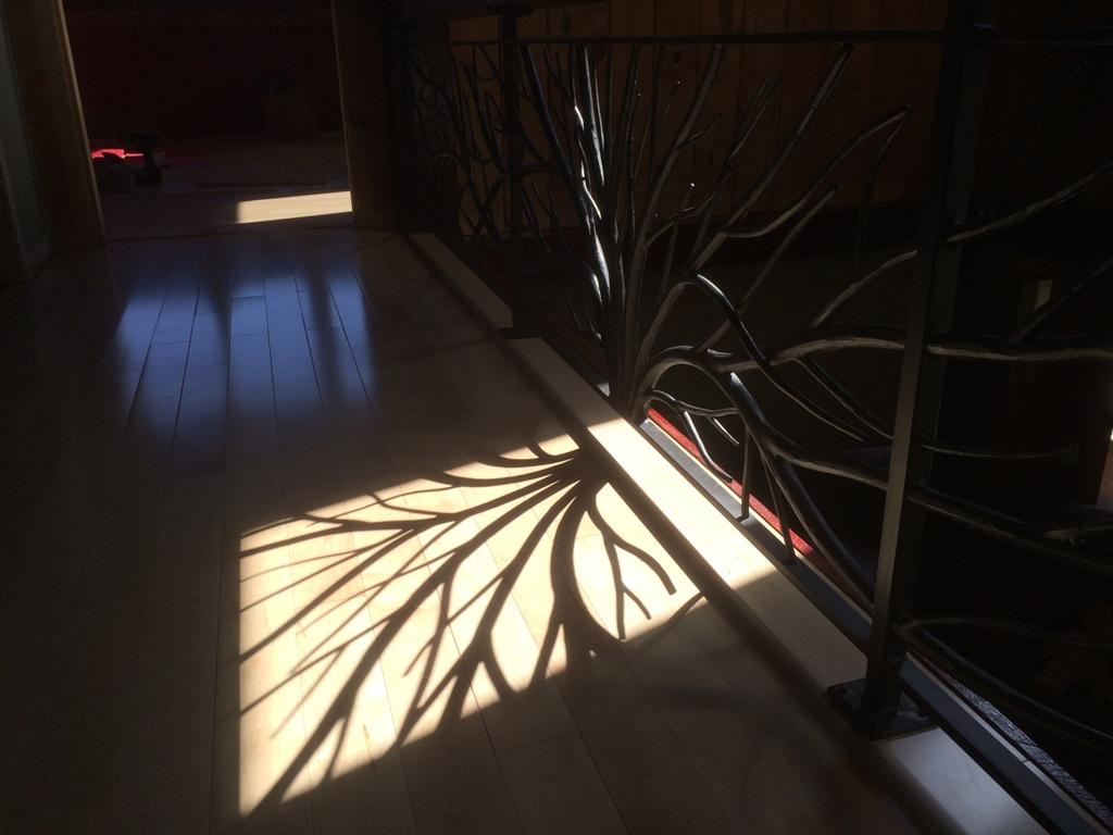 This railing casts beautiful shadows