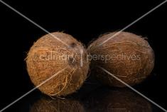 Coconuts - 1.jpg