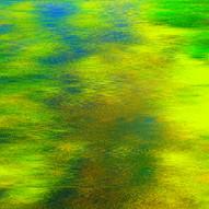 green .jpg