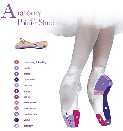 pointe shoe pic_edited.png