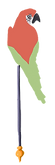 ponykarussell-papagei-ara
