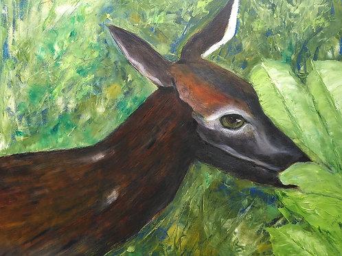 Deer Munching