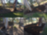 before and after mulch.png
