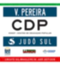 VINÍCIUS_VIERIRA_PEREIRA.png