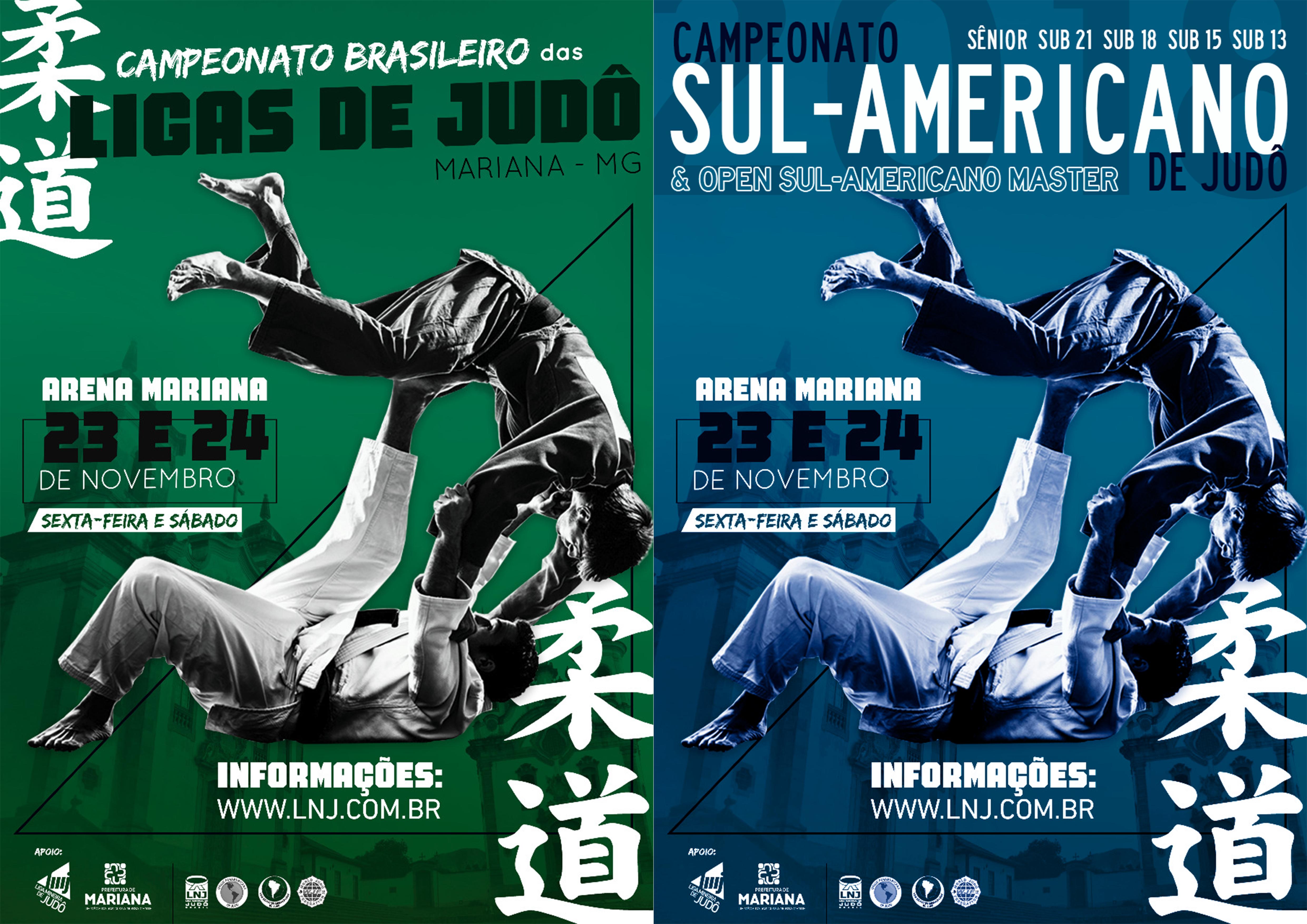 BRASILEIRÃO & SUL-AMERICANO 2018