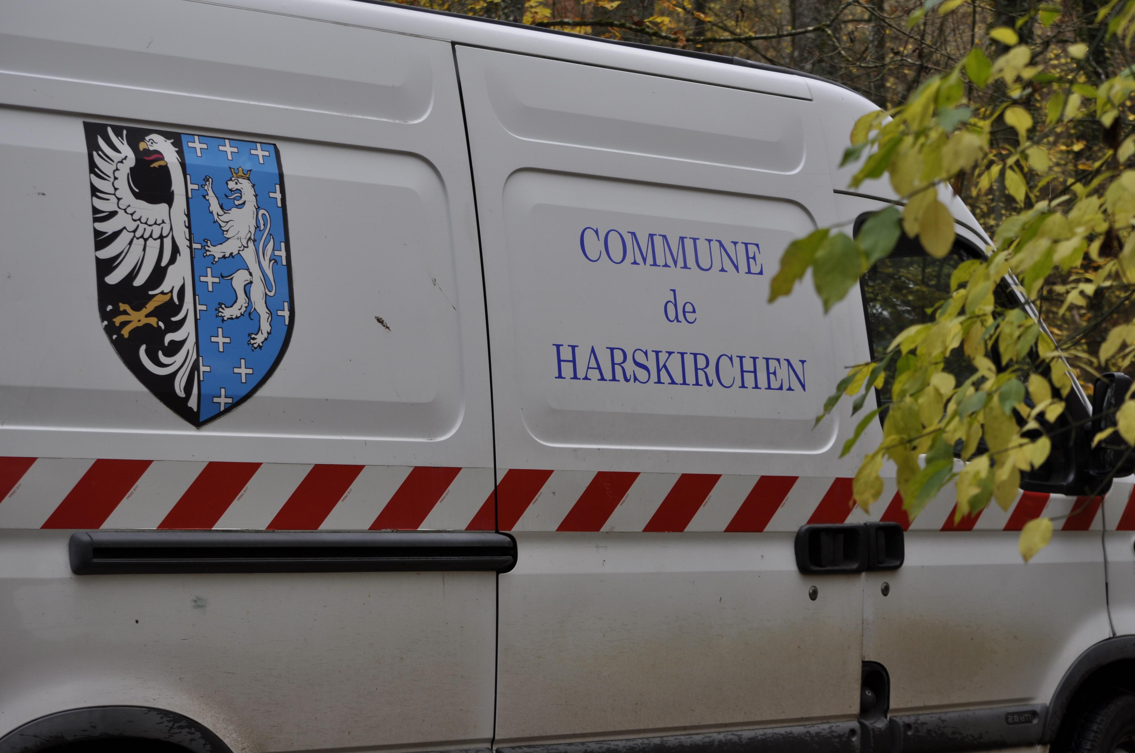 Harskirchen Saegemuehleweiher86