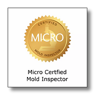 Certified Mold Inspector