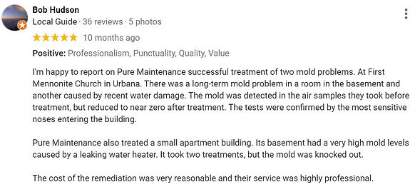 Church Mold Removal Review