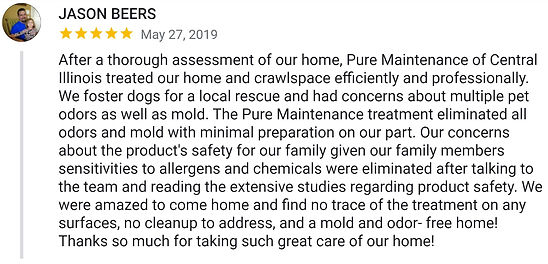 Home Mold Removal Review
