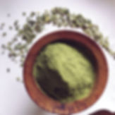 poudre-moringa-superfood-bio.jpg