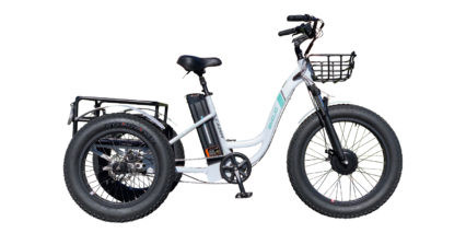 EMOJO Caddy Trike Review