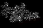 Yonlin Logo