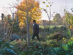 Jean-Philippe Beau-Douezy dans le jardin forêt comestible