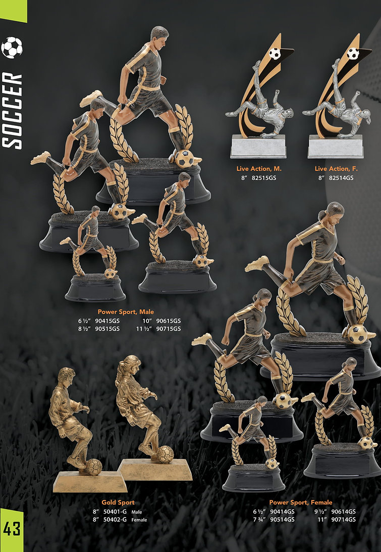 All Star Sports Awards-.25x3-8.jpg