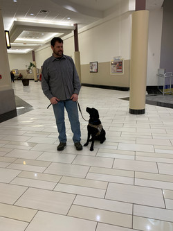 Mall Training