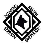 DiamondMatchLogo300.jpg