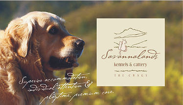 Savannalands Kennels and Cattery, luxury pet boarding in Plettenberg Bay for dogs and cats. Plettenberg Bay kennels.