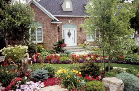Landscaping Builds Equity