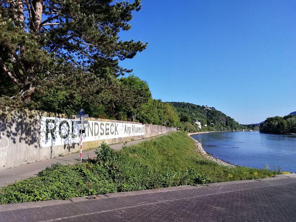 Rheinschild
