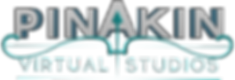 PinakinVirtualSudios_Logo_V2_Transparent