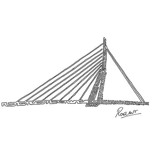 Rotterdam - Erasmusbrug (De Zwaan)