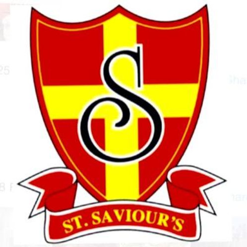 St Saviour's Primary Hair Accessories