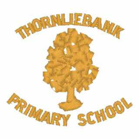 Thornliebank Primary Hair Accessories