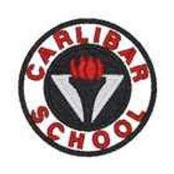 Carlibar Primary School Tie