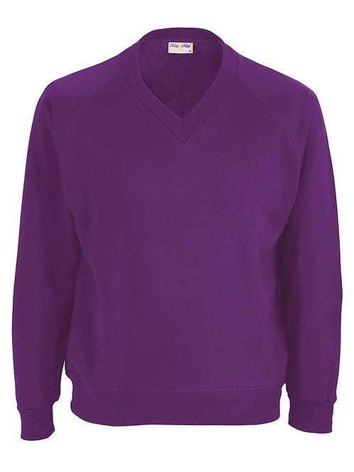 Darnley Primary Sweatshirt V Neck