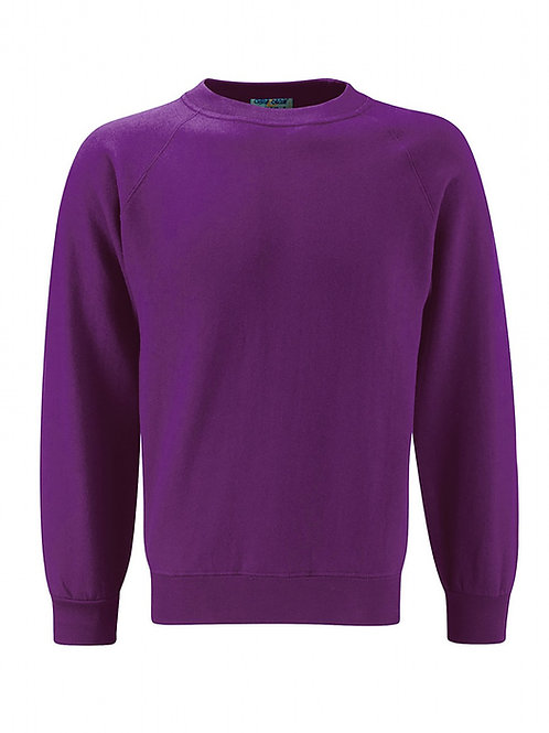 Darnley Primary Sweatshirt Crew Neck