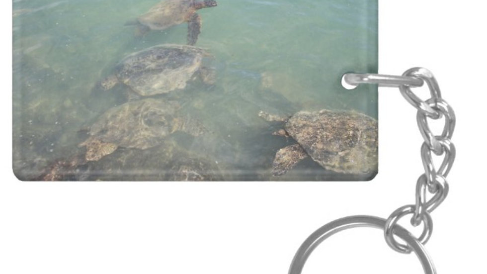 Hawaii Sea Turtles Products