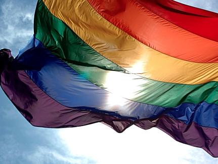 O Avanço Cultural do Movimento Homossexual — e a Resposta da Igreja