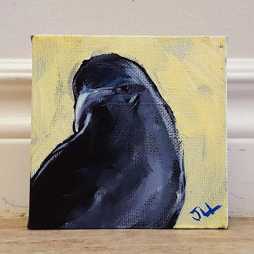 Crow Portrait 2 by Jaime Lee Lightle