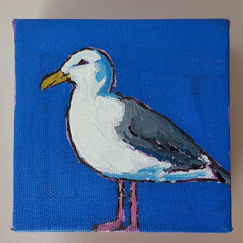 """Seagull"" by Jaime Lee Lightle"