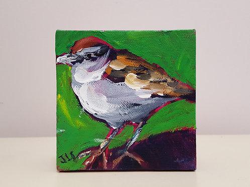 Sweet Sparrow 2 by Jaime Lee Lightle