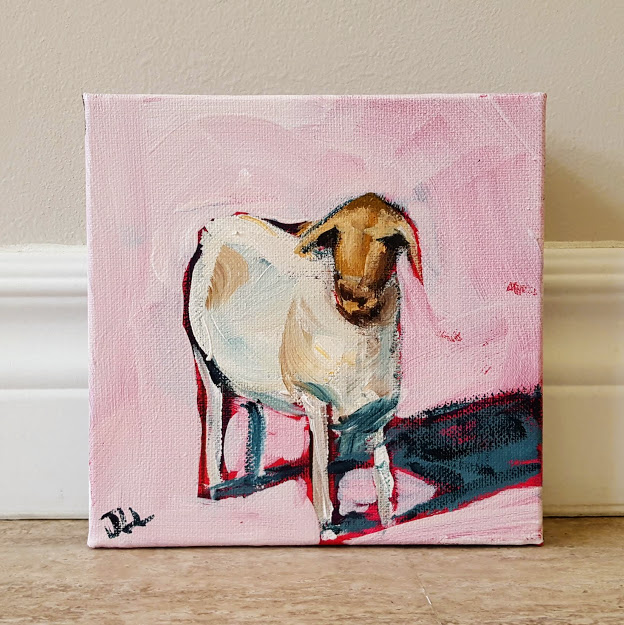 Distracted Goat