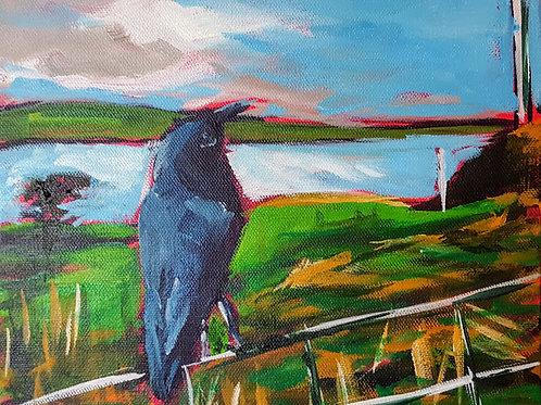 On the Fence by Jaime Lee Lightle