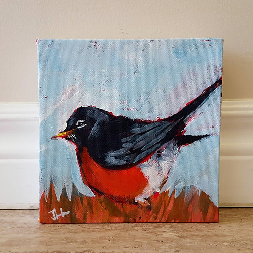 Newfoundland Robin by Jaime Lee Lightle